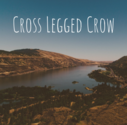 Cross Legged Crow